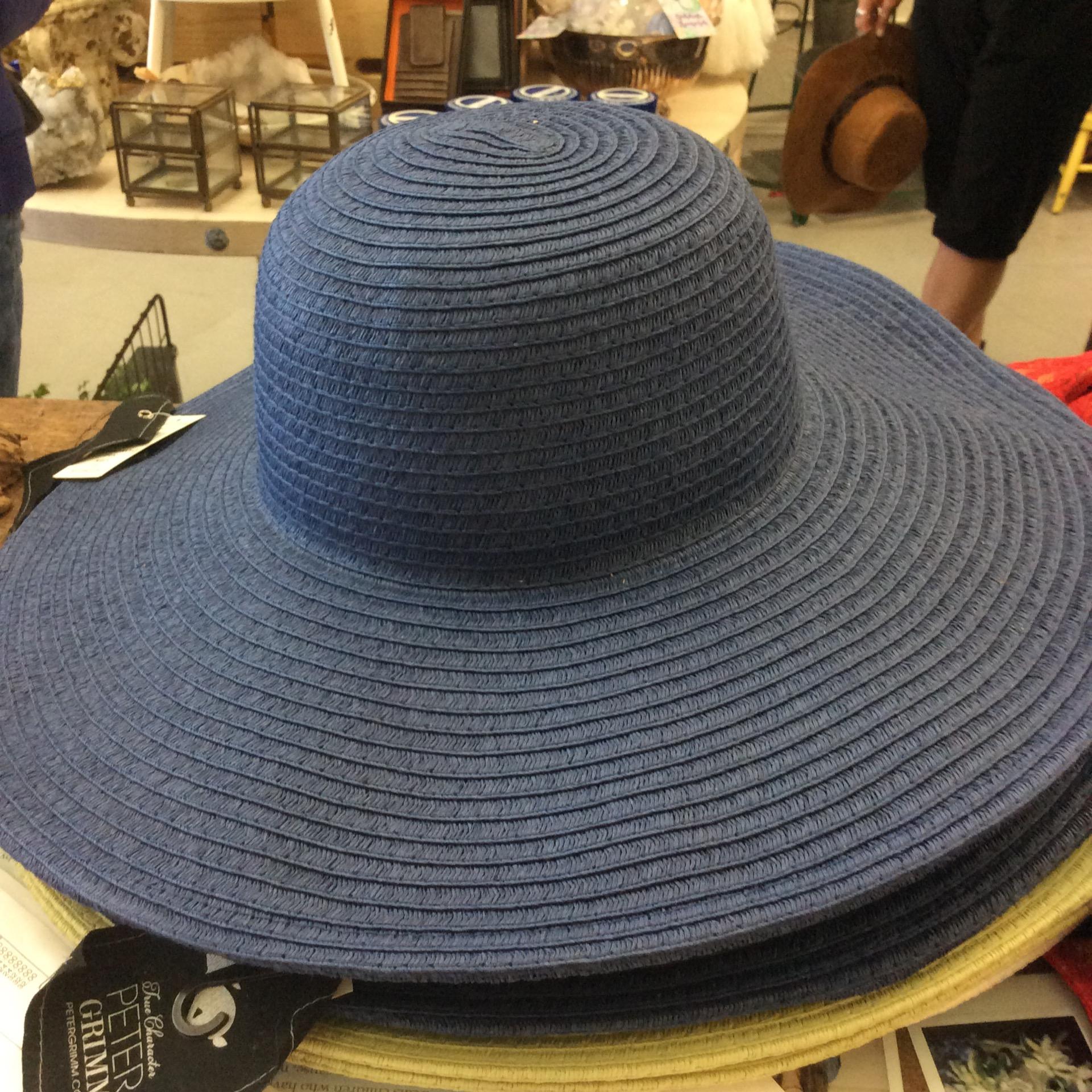 Peter Grimm Erin Navy Hat 6a16c691241